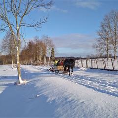 у санях по свіжому снігу