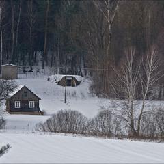 старий будинок на краю лісу