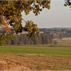 осінь на полях