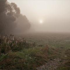 сонце крізь туман