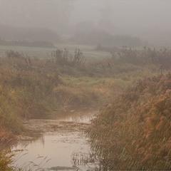 а на річці туман