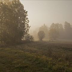 ранок туманний - 4