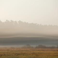 незвичайний туман