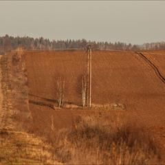 зима за селом - грудень