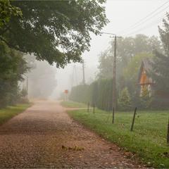 туманное утро в деревне