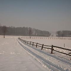 зима - 23-02-2021