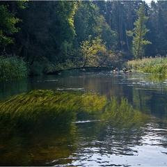 на реке Черна Ганча