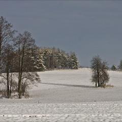 по першому снігу - 2