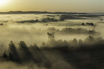 Тумани ріки Псел