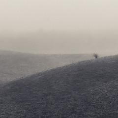 Туманний простір.