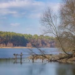 Весна на Темному озері.