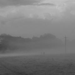 Густі тумани покордоння.