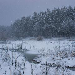 Сніжило.