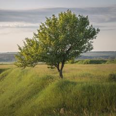 Слобожанський пейзаж.