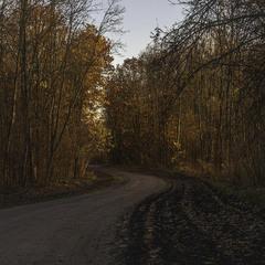 Шляхи - дороги. Вечір, місяць листопад.