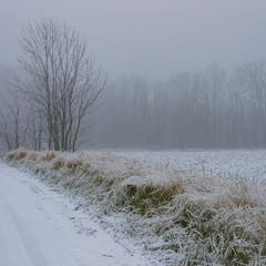 З узбіччя зимових доріг.
