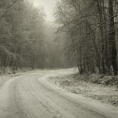 Зимовим шляхом.