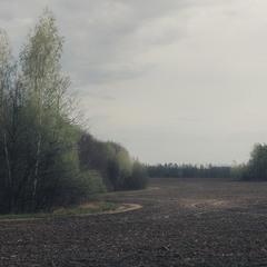 Вид на дорогу край поля.