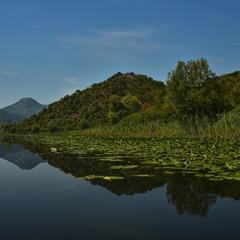 Montenegro Calm (Тиша в Чорногорії)