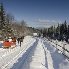 Зимовими дорогами Карпат