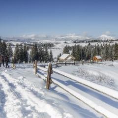На зимових перехрестях