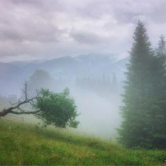 Туман і гори