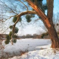 Зимовий портал