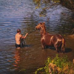Купання коня