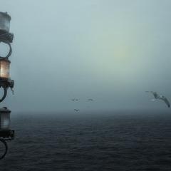 Туман, туман-седая пелена
