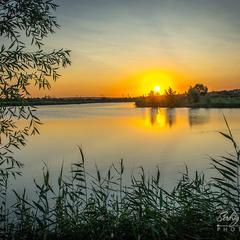 Вечірнє сонце, дякую за день!..