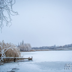 Landscape with frost...