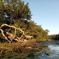 Річковий вечірній пейзаж