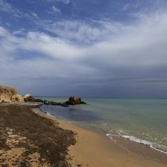 Осенние цвета Черного моря