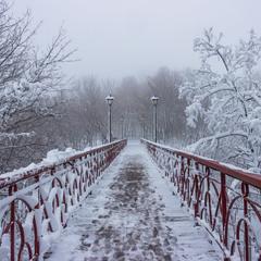 Зимний парк...