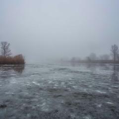Туманный лед