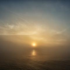 Утренние надежды