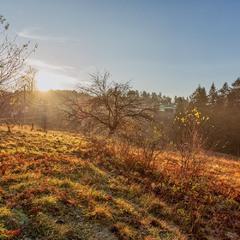 Солнечным ноябрьским утром