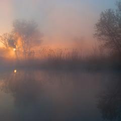 сонце в тумані*
