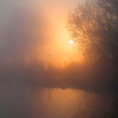 сонце в тумані3