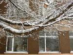 Радости первого снега.