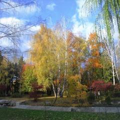 Осень это музыка красок.