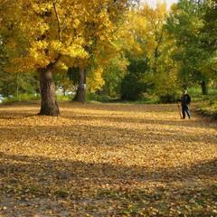 Наедине с осенью.