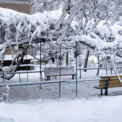 Утро красит белым снегом.