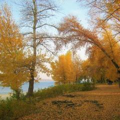 Лазурная просинь - подружка жёлтой осени.