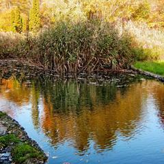 Осенние отражения.