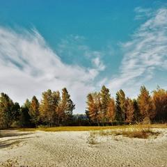 Октябрьской осени нордический характер