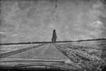 У дорозі
