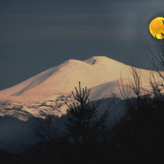 ...ночкой лунною...