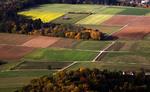 Краски осенних полей