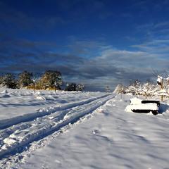 Зима-творец